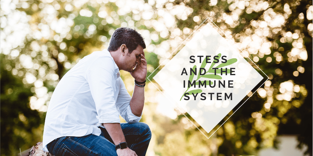 Stress and the Immune System